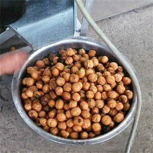 Macadamia nut shelling